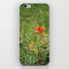 Delicate Wild Poppies - Contemporary iPhone Skin