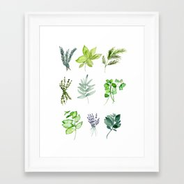 HERBS Framed Art Print