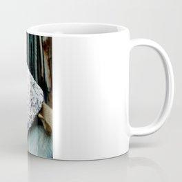 We're Not in Kansas Anymore Coffee Mug