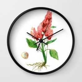 Quinoa Wall Clock