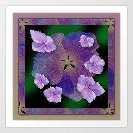 LACECAP HYDRANGEA FLOWER BOUQUET  Art Print