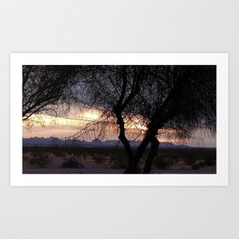 Buckeye Sunset Art Print