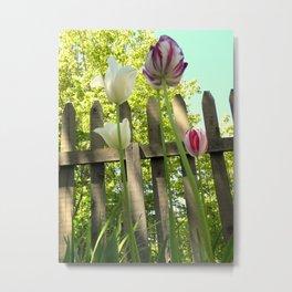 Tall Tulips Metal Print