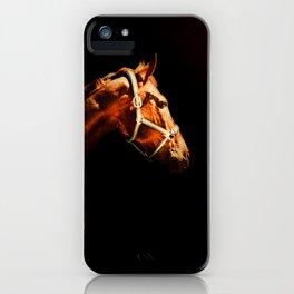Horse Wall Art, Horse Portrait Over a Black background, Horse Photography, Closeup Horse Head iPhone Case