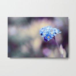 Forget-Me-Not Myosotis Blue Flower Metal Print