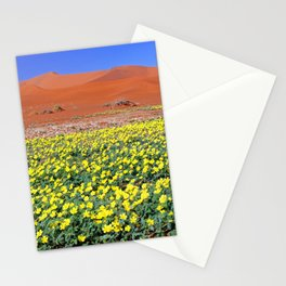 Flowers in the Namib desert, Namibia Stationery Cards