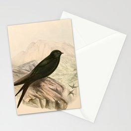 Psalidoprocne pristoptera orientalis Stationery Cards