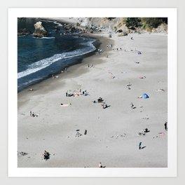 Scenes from Muir Beach, San Francisco Art Print
