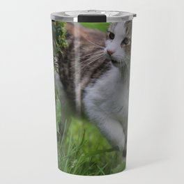house cats Travel Mug