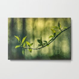 juicy twig Metal Print