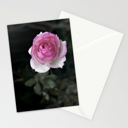 The last rose of winter Stationery Cards