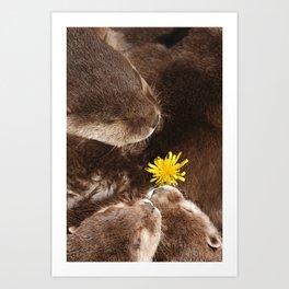 Otterly Cute Flower Power Art Print