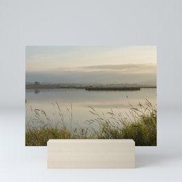 Light Falling Softly On The Marsh Mini Art Print