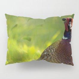 Mr Spring Pillow Sham