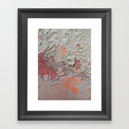 017 Framed Art Print