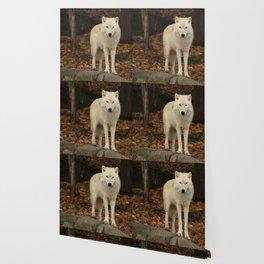 Spirit of the forest Wallpaper