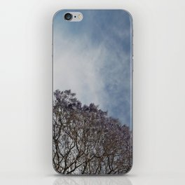 Spring sky and tree iPhone Skin