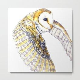 Milo - Australian Masked Barn Owl Metal Print