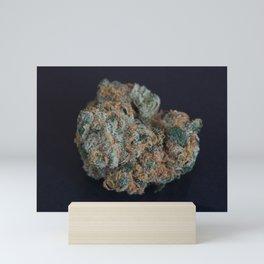 Jenny's Kush Medicinal Marijuana Mini Art Print