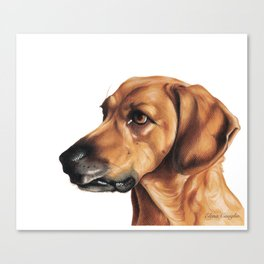 Dog Artwork in coloured pencil Canvas Print
