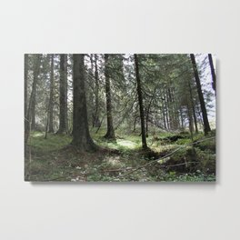 Mitt stille land Metal Print