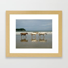 Wild Horses On The Beach Framed Art Print
