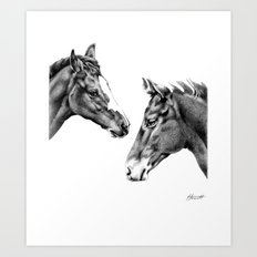 Foal Friends Art Print