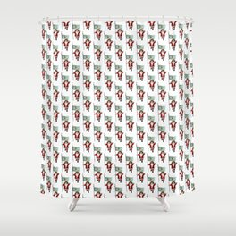 Santa Claus With Flag Of Delaware Shower Curtain
