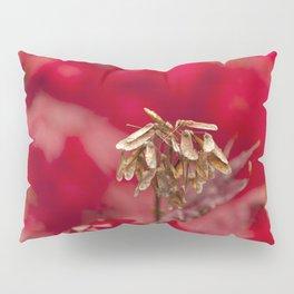 Seeds of Hope Pillow Sham