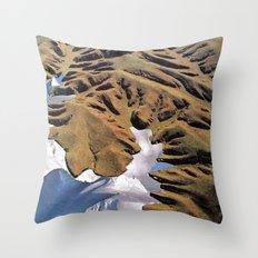 Collage #1 Throw Pillow