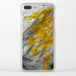 Lichens Clear iPhone Case