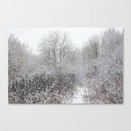 WINTER. TREES. SNOW Canvas Print