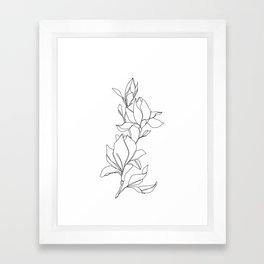 Botanical illustration line drawing - Magnolia Framed Art Print