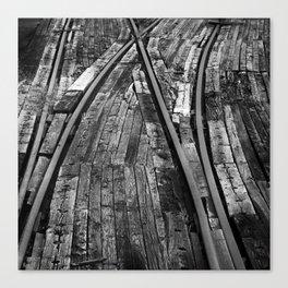 Bailey Tracks Canvas Print