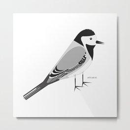 White Wagtail Metal Print