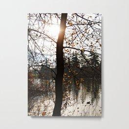 Scenic lake view Metal Print