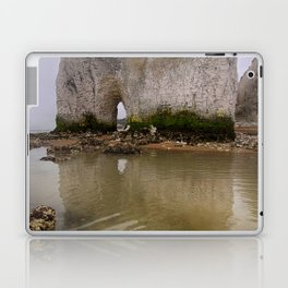 Whiteness Arch Kingsgate Laptop & iPad Skin