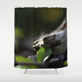 Lost | Earth Shower Curtain