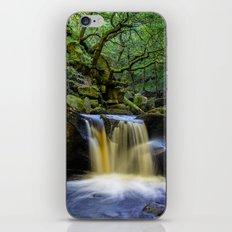 Padley Gorge II iPhone & iPod Skin