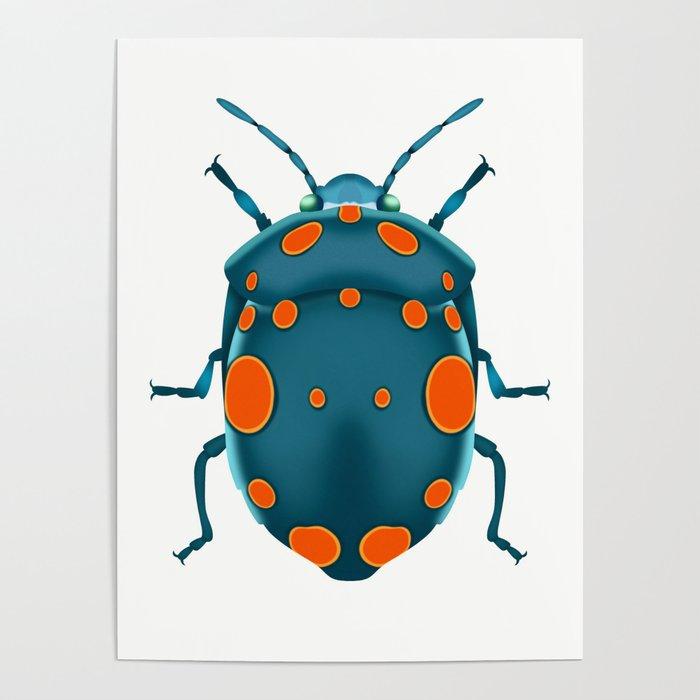 Physic Nut Stink Bug Poster