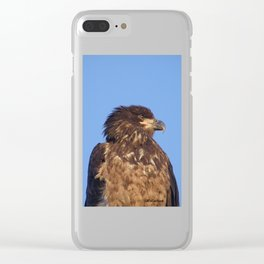 Golden Eagle on the Kenai Clear iPhone Case