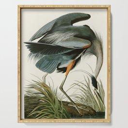 Great blue Heron - John James Audubon's Birds of America Print Serving Tray