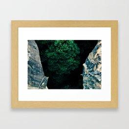The Forest Below Framed Art Print