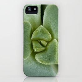 Succulent close up 4211 iPhone Case