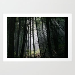 Encounters of the Vermont Kind Art Print