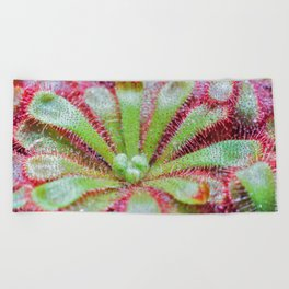 Drosera Beach Towel