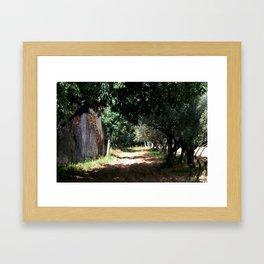 Can Nualart Framed Art Print