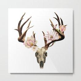 Anatomy of Flowers II Metal Print