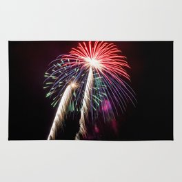Palm Trees or Fireworks Rug