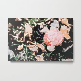 Amanita Muscaria Painting Metal Print